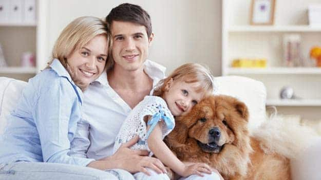 Wills & Trusts dog-young-family Direct Wills Merton